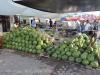 Die Melone als Grundnahrungsmittel