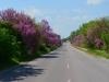 Die schönsten, nicht immer die besten, Straßen hat Bulgarien. Leider meist ohne Seitenstreifen.