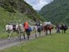 Die nächsten Tage tragen die Pferde unser Gepäck